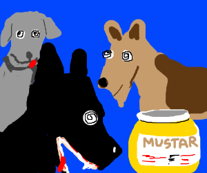 dogs are hypnotized by mustard