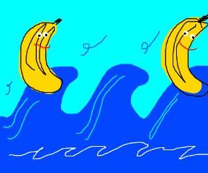 Bananas on the high seas.