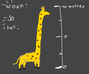 Worlds tallest giraffe