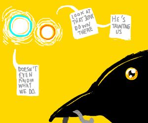 suns think crow hates them