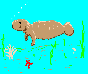 Brown contoured mammal.
