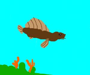 The rare and elusive Turdfish