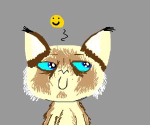 Grumpy Cat is... Pleased