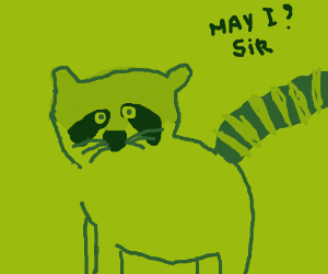 Very polite raccoon