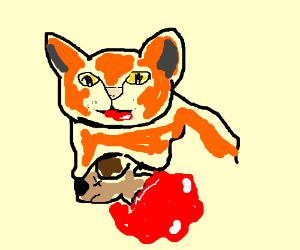 cat ate dog