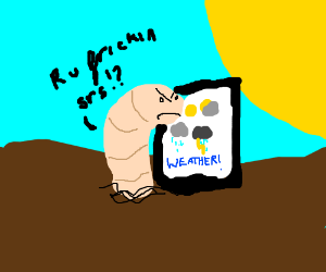 Worm hates the weather forecaster