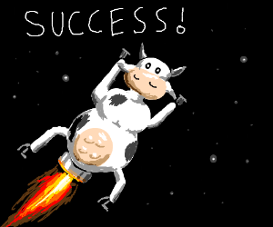 COW ROCKET IS SUCCESSFUL!!