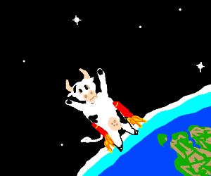 Rocket fueled cow blasts into space