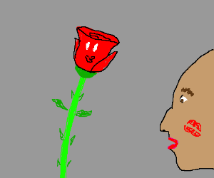 Bald woman with kiss on cheek smiles at a rose