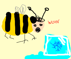 Giant Bumblebee finds Giant Ice Cube