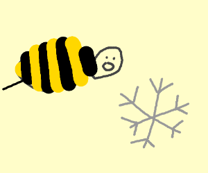 A bee fascinated by an ice crystal
