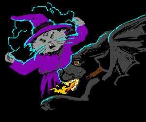 Cat Wizard vs. Dog Dragon. Epic battle!