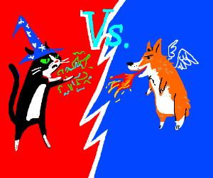 Wizard cat vs fire breathing, flying dog