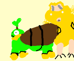 Turtwig and Torchic