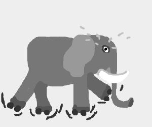 Elephant struggles to use rollerskates