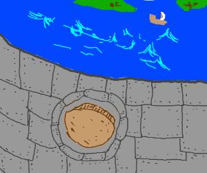 A seal on an ocean ledge