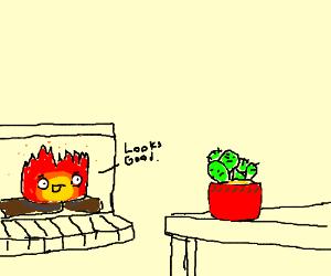 Casper gets a house plant