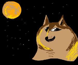 Weredoge. Such moon. Much full. Howl.