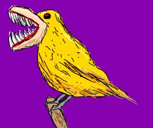 Scary canary