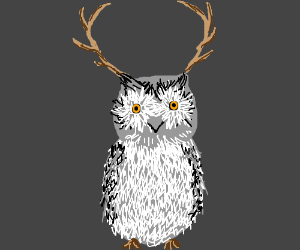 The majestic Great Antlered Owl