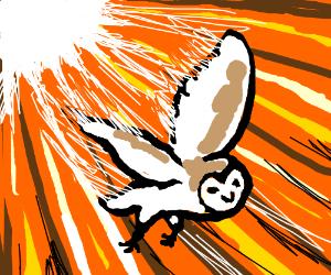 OWL'S GOTTA GO FAST!