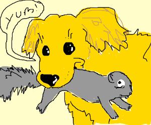 A talking golden retriever eating a squirrel