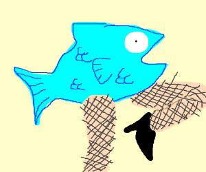 fish wearing fishnets