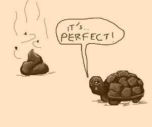 Turtle cries because of the perfect poo.