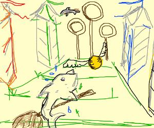 Fish play quidditch
