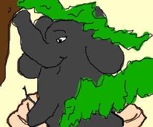 The Birth of Venus: Elephant edition.