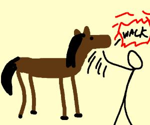 man slaps horse face.
