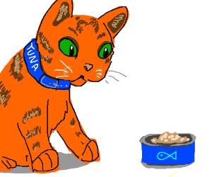 Goopher tuna bring more tunaaaaa for Is tuna fish good for cats