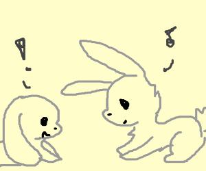 two bunnys have fun