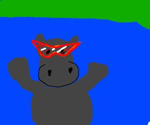 Hippo with Kamina's sunglasses