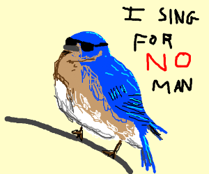 Blue bird refuses to sing. How disappointing.