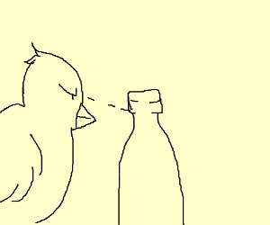 Bird stares intensely at the empty bottle