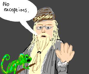 Chameleon not excepted into Hogwarts