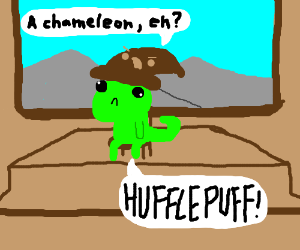 Hogwarts is not a place for chameleons