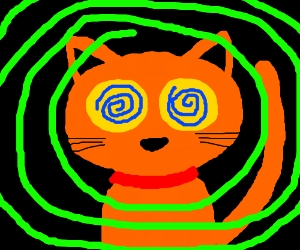 Orange cat with red collar has hypno-eyes.