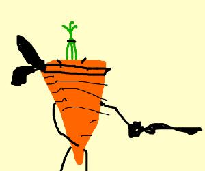 Ninja carrot
