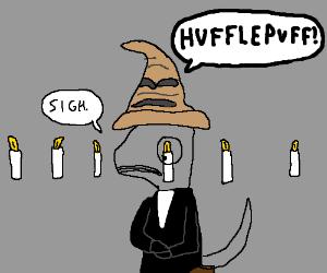 Chameleons always get sorted into Hufflepuff.