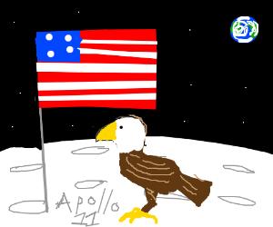Apollo 11 sent an eagle to the moon