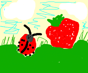 a bug and a strawberry