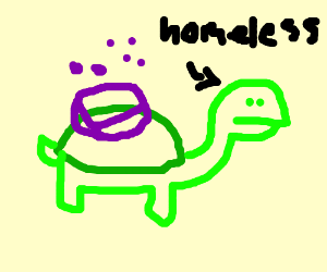 homeless tortoise carrying a soap