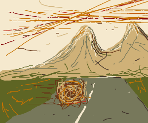 A tumbleweed does its tumbling thing