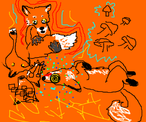 Foxes ate the mushrooms again