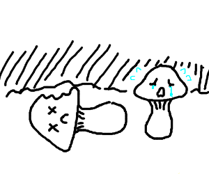 child mushroum mourns loss of parent mushroom