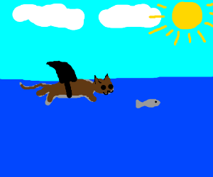 Tan cat with shark fin