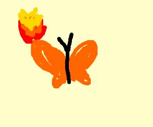 Orange butterfly on fire.