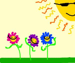 Happy flowers enjoying sunshine!